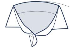 Spread collar illustration
