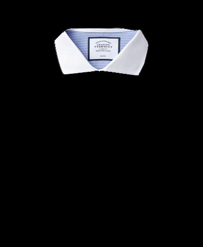 Spread Winchester Collar Non-Iron Winchester Stripe Shirt- Blue & White