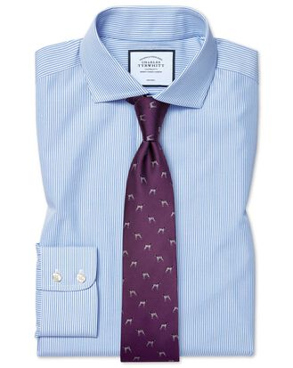 Extra slim fit non-iron cutaway sky blue Bengal stripe shirt