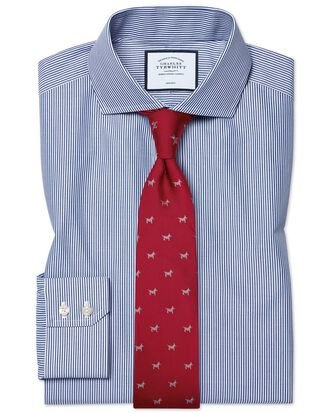 Extra slim fit cutaway non-iron Bengal stripe navy shirt