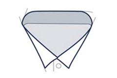 Wing collar illustration